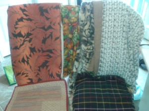 New Fabrics my Mama Bear got me today-- Some Minky, Faux fur, and more!!  The Minky will be used for some cute little stuffed owls I am already dreaming up different patterns!!!!